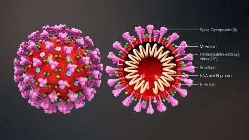 corona virus 5g antenna