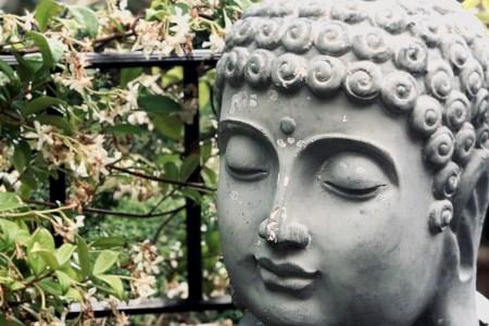 metta buddhisme