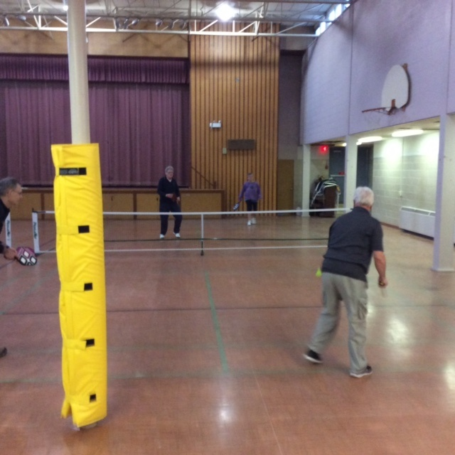 Pickle Ball and Post Pads