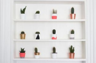 Image credits: https://www.bloglovin.com/blogs/kate-la-vie-4532619/diy-painted-cacti-pots-4160541339