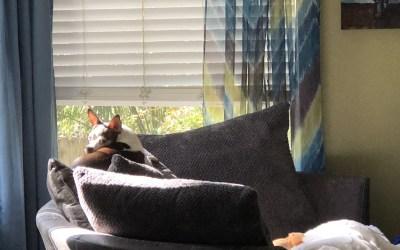 Cosmo Took Breezy's Spot
