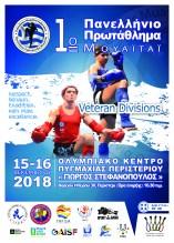 PMF_poster_A3_VETERANS-panellinio2018-Artboard 1-100