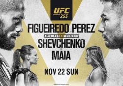 UFC 255 Fight Picks