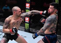 UFC 256 Prelims