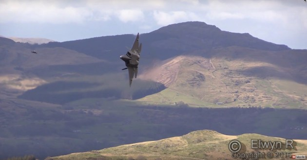 Raptors in the Mach Loop? Uh....YES!!!