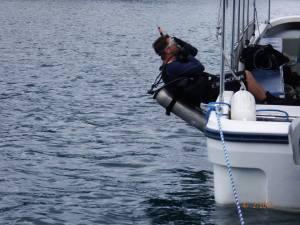 Beginning the dive. Credit: Derek Abbey