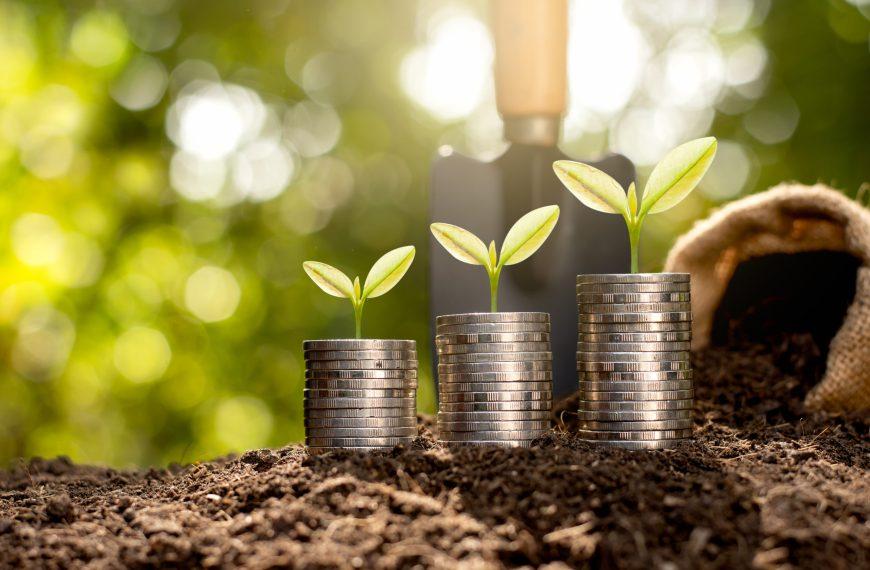 PART 7: The Three-Fund Portfolio