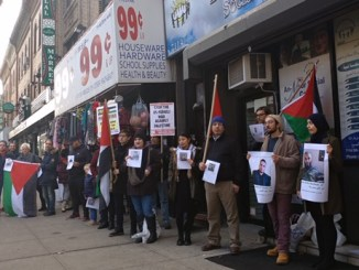 NYC Palestine solidarity demo, Nov. 2018