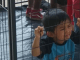 Children in ICE cages.