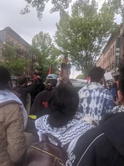 Palestine Brooklyn rally 20210508_3