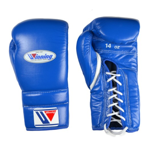 Top 10 Most Branded Boxing Gloves 2017