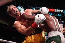 20210606 Showtime Mayweather V Paul Fight Night Westcott 1537