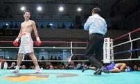 Ogawa Aldea12