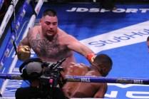 Ruiz Defeats Joshua08
