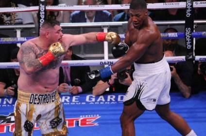 Ruiz Defeats Joshua13