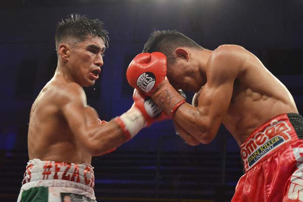 Boxing News, Results, Schedule, Rankings » Fightnews com™