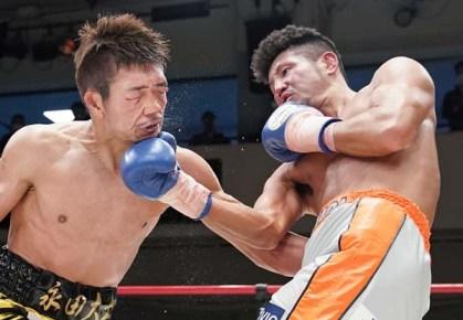Yoshino31