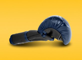 Fight Quality MMA Glove Reviews