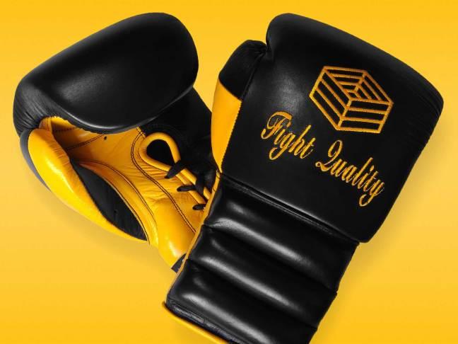 iBox Customise Custom Boxing Gloves
