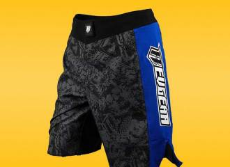 Revgear Spartan II Pro MMA Shorts Review