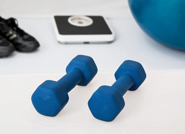 hand weights / egg weights