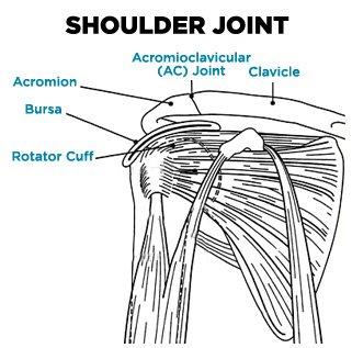 Medical Student Uses Jiu-Jitsu Move To Break Cadaver's Arm