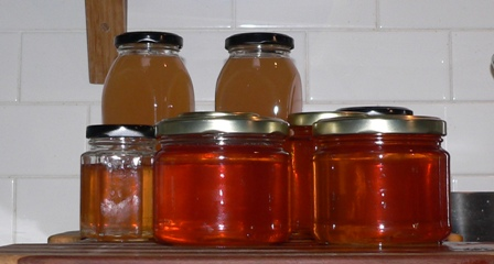 apple-jelly-and-slab-pizza-006