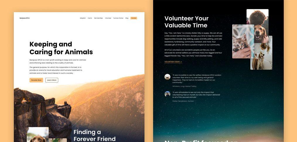 Mariposa website template