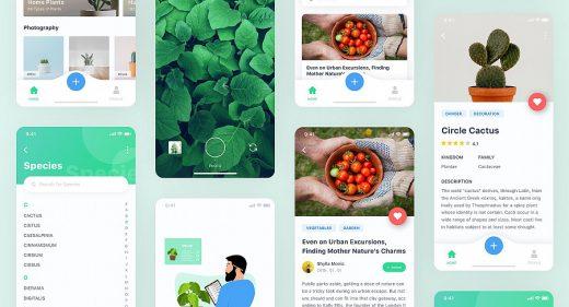 Free plant app Figma template