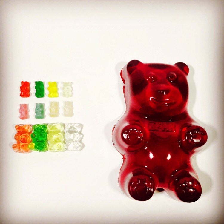 gummy bear grow experiment, Wee Warhols, Austin, TX, science, STEM