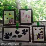 pressed flowers, dried flowers, kids art, Wee Warhols, Austin