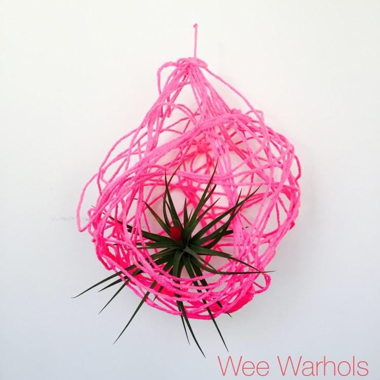 yarn, process art, air plants, Wee Warhols, Austin