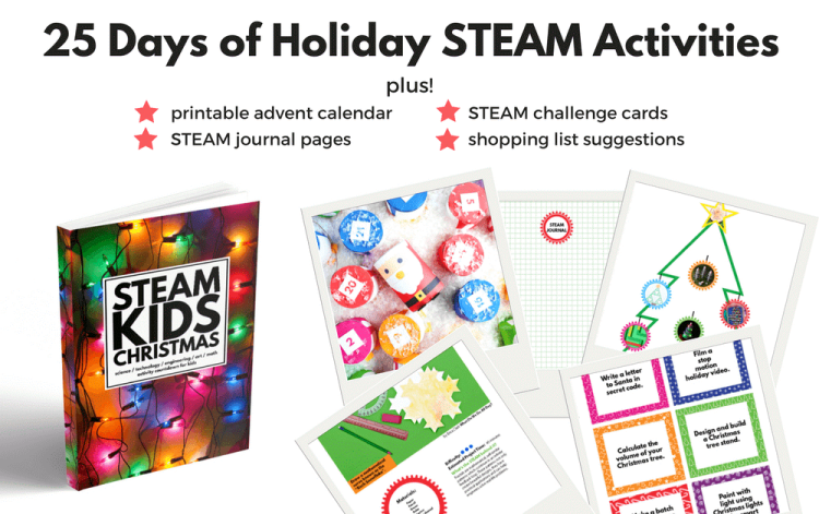 STEAM KIDS Christmas holiday book, STEM projects, Wee Warhols