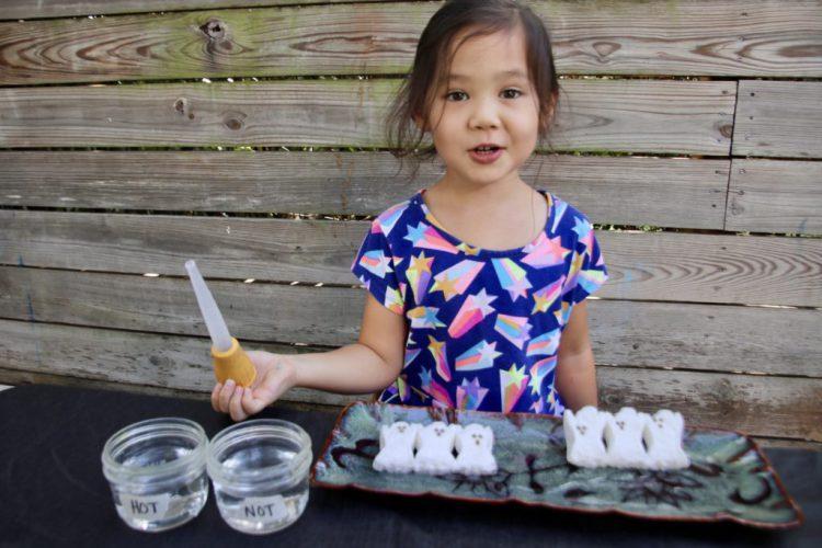 Halloween, candy science, Peeps, Figment Creative Labs, Austin Texas, dissolve experiment