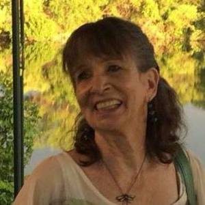 Sue Reading, Figment, Austin