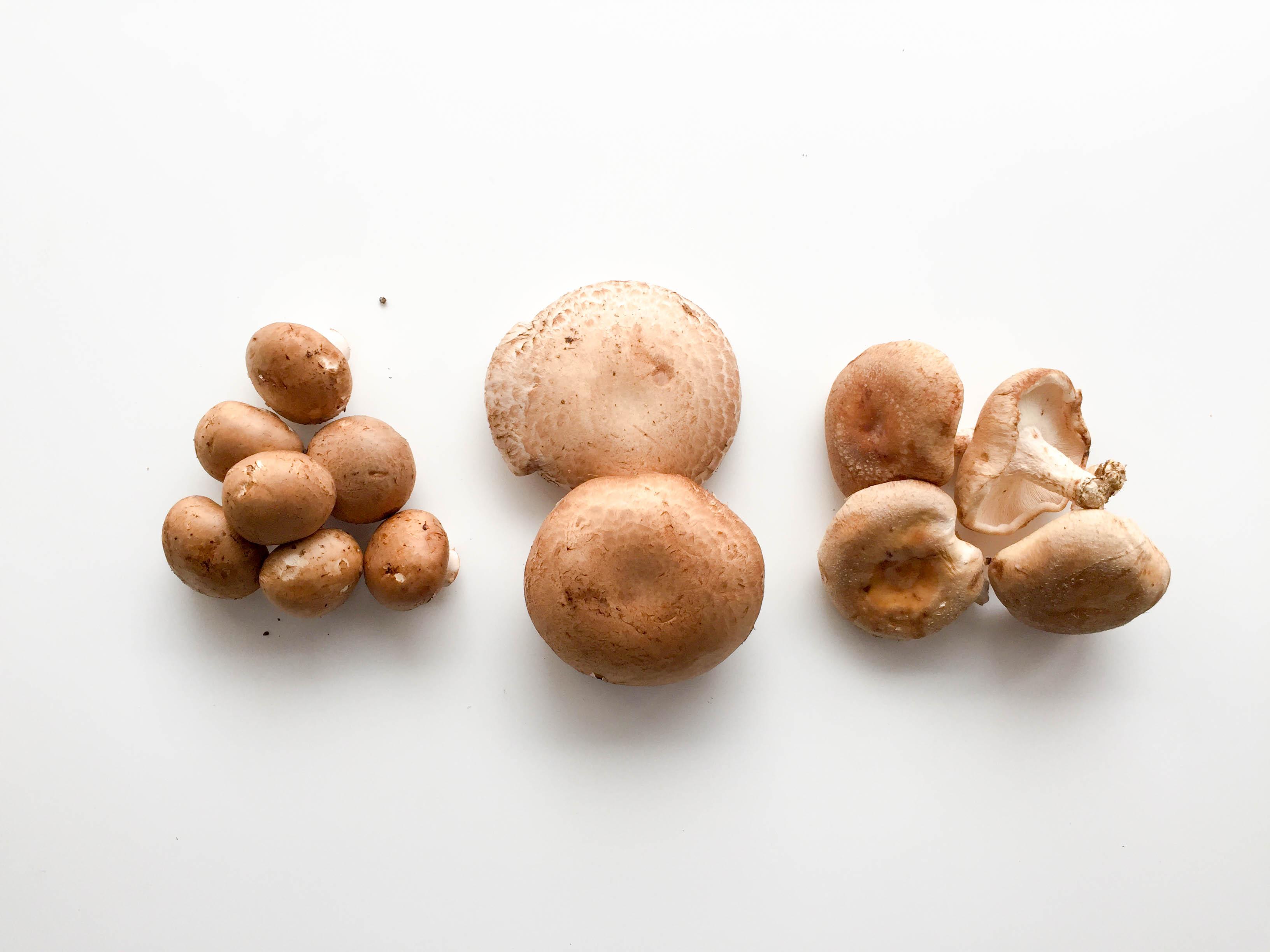 Featured Ingredient: Mushrooms