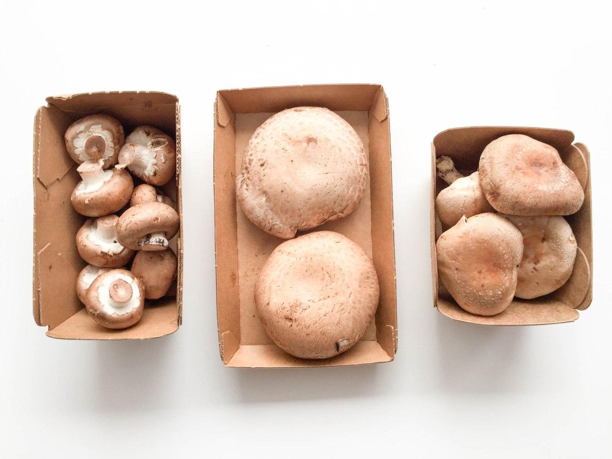 mushrooms (1 of 1)-5