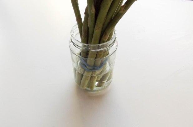 asparagus (1 of 1)-5