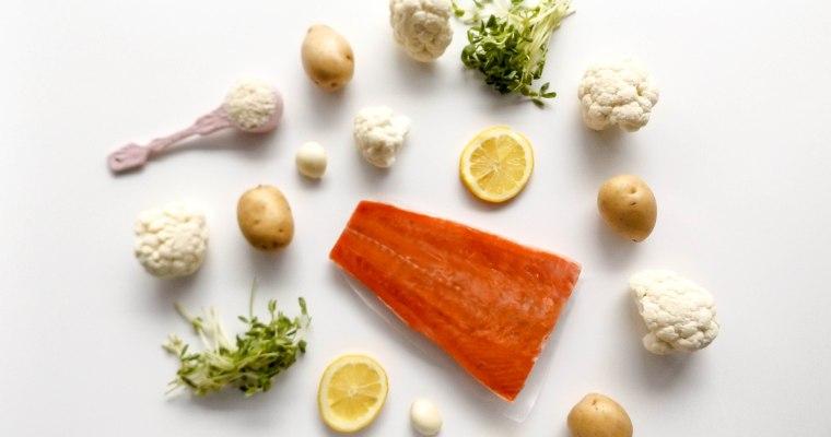 Salmon & Cauliflower Pureé