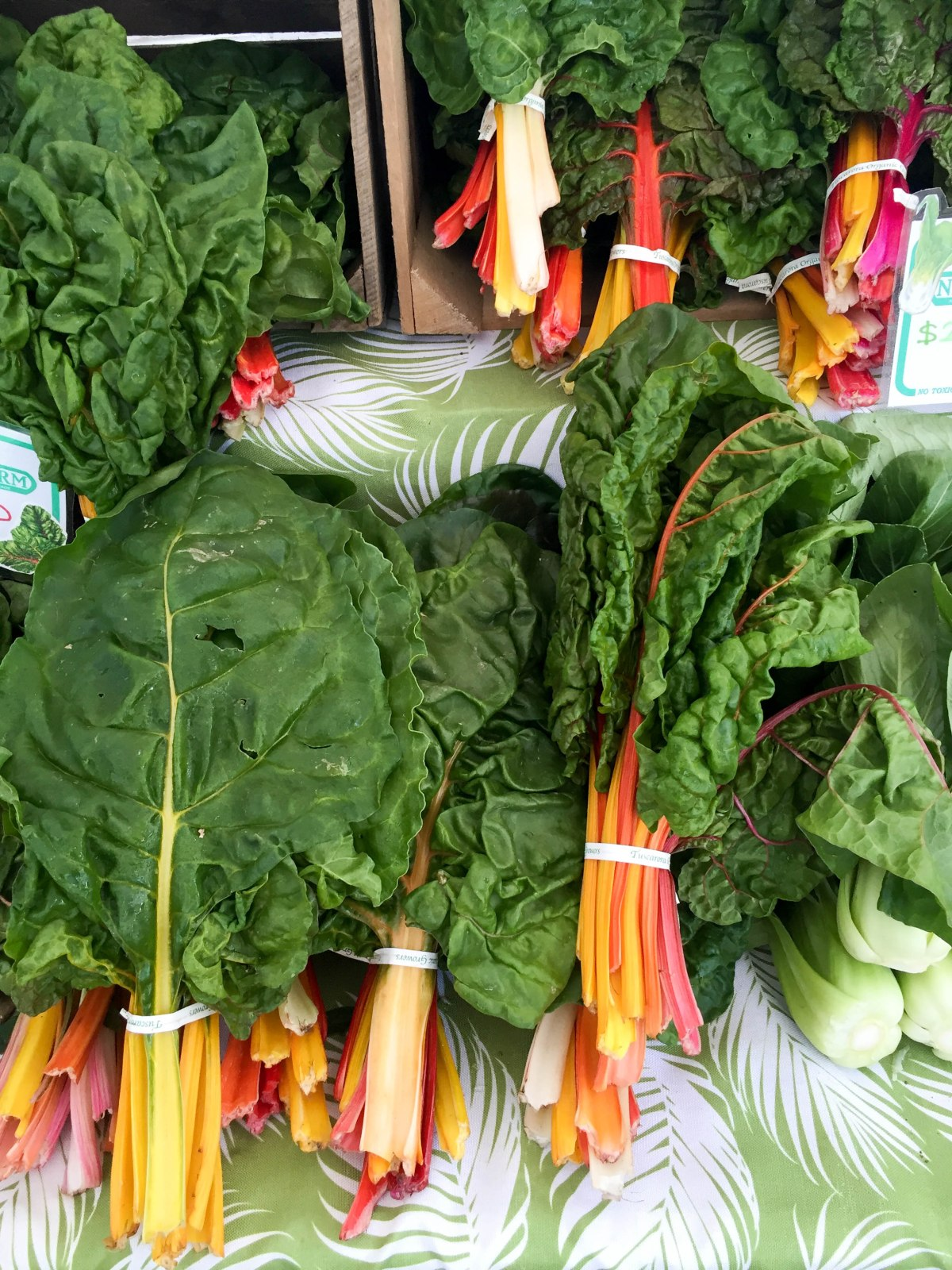 swiss chard (1 of 1)-5