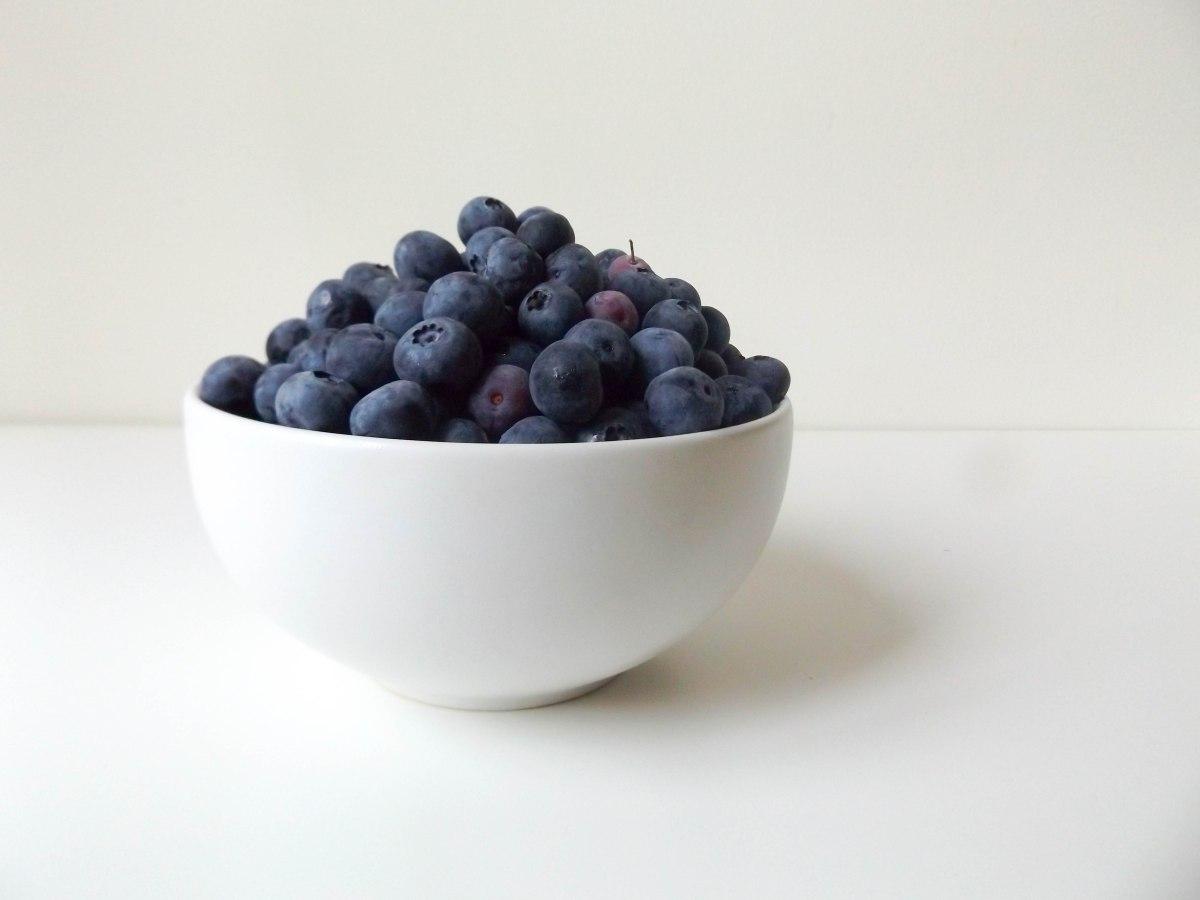 blueberries (1 of 1)-4.jpg