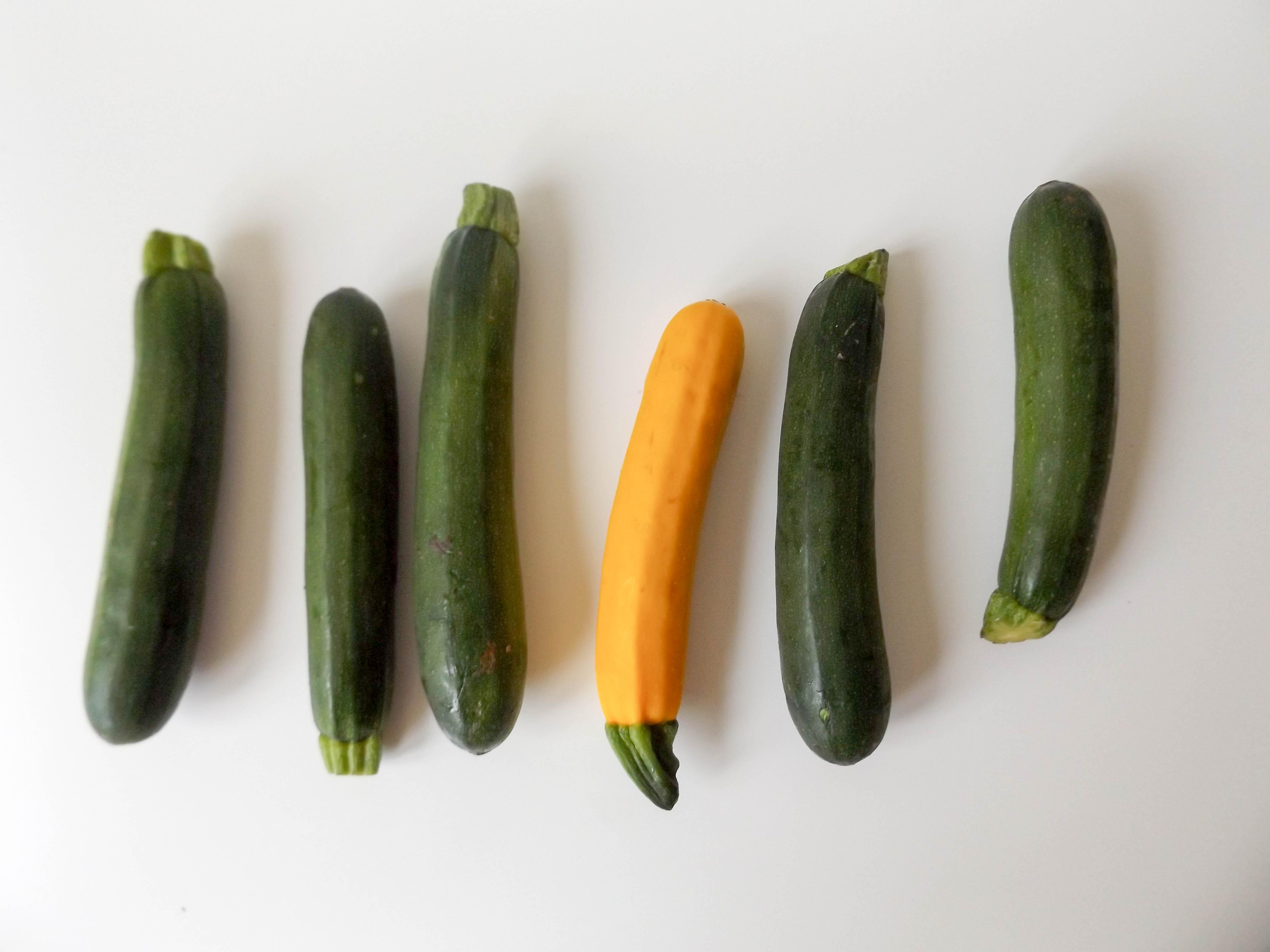 Featured Ingredient: Zucchini