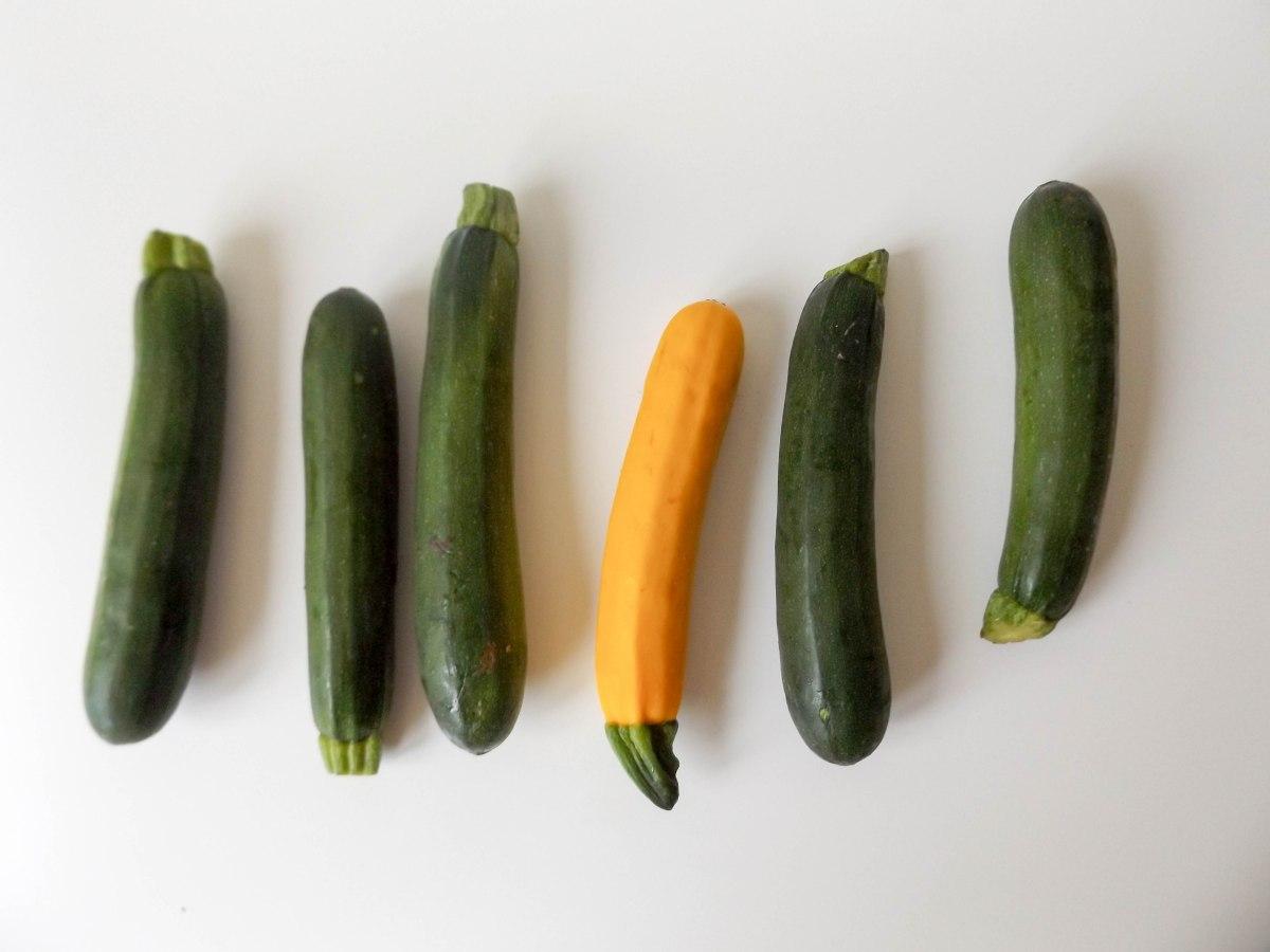 zucchini  (1 of 1)-3