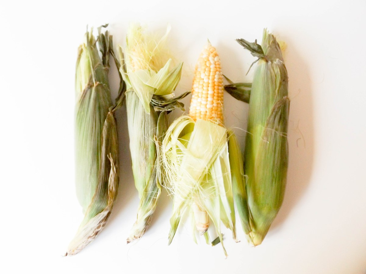 Corn (1 of 1)-2