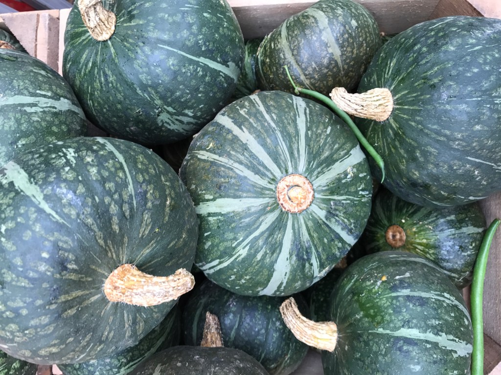 Featured Ingredient: Green Kabocha