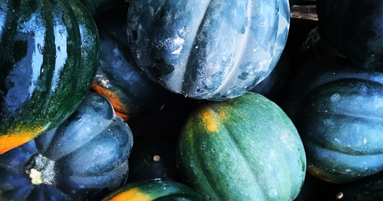 Featured Ingredient: Winter Squash