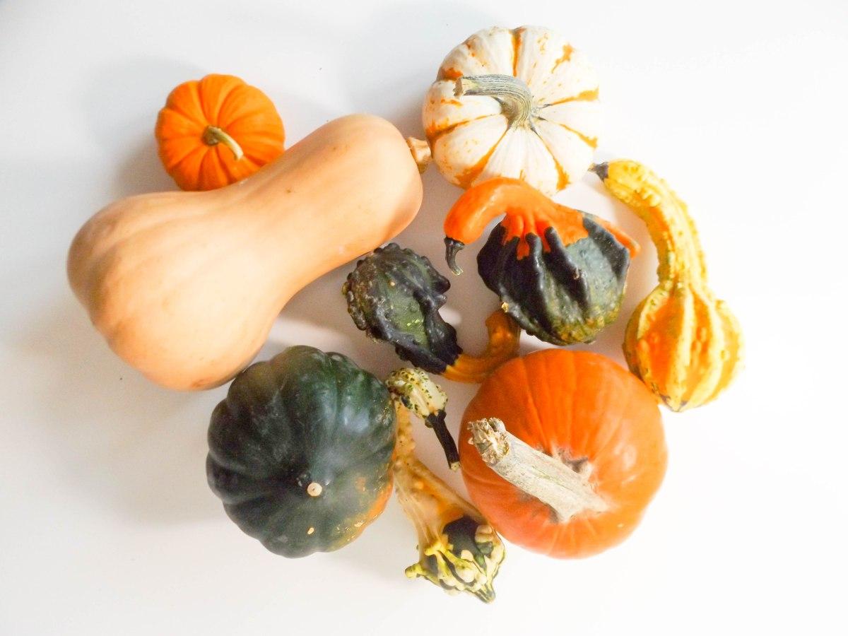 pumpkins-1-of-1