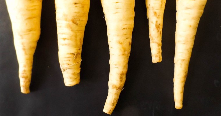 Featured Ingredient: Parsnips