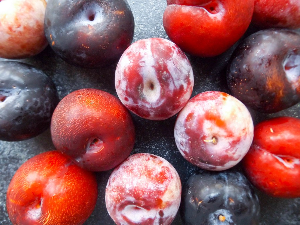 Ingredient of the week: plums