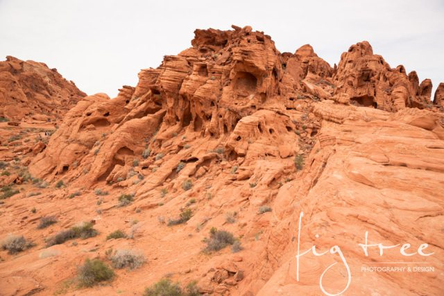 Valley_of_fire_08